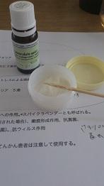 DSC_0499.JPG